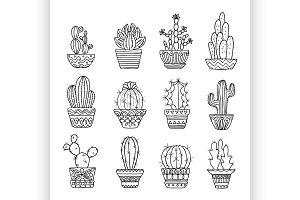 Hand drawn sketch, vector cactus set