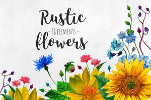 Watercolor rustic flowers clip art