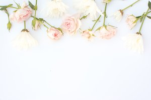 Soft Pink Floral Stock Image