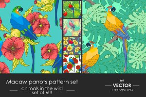 Macaw parrot pattern set