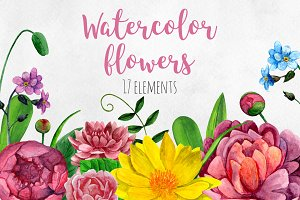 Watercolor floral clip art bundle