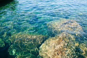 Clear Water in the Sea