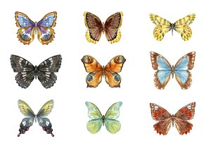 9 watercolor butterflies (EPS + PNG)