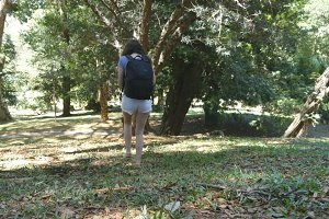 Tourist girl with backpack is walking along tropical forest. Female feet stepping at hill at the wood. Young woman going at green jungle. Freedom travel concept. Rear back view Close up
