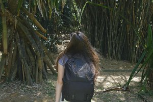 Happy girl with backpack is walking along green jungle and having fun. Young beautiful woman going at tropical forest. Freedom travel concept. Rear back view