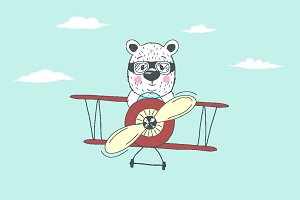 bear fly plain