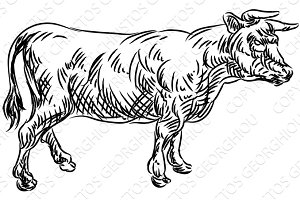 Cow Beef Food Grunge Style Hand Drawn Icon
