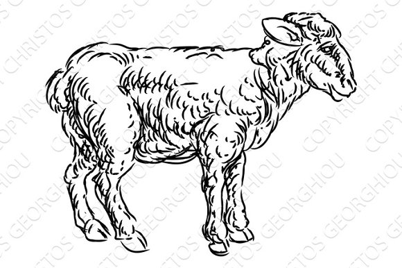 Lamb Sheep Food Grunge Style Hand Drawn Icon