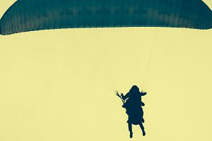 Silhouettes of skydivers