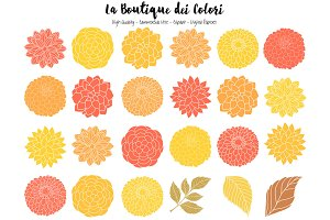 Fall Dahlia Flowers Vector Clipart