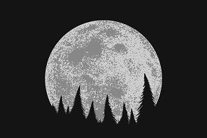 Forest on full moon background