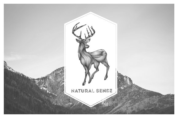 Animals Illustrations in Illustrations - product preview 3