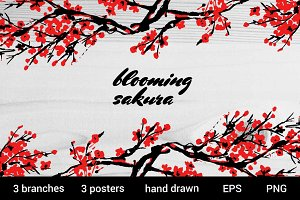 Blooming sakura traditional painting