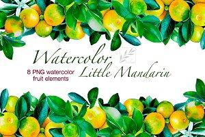 Watercolour little mandarins