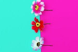 flowers minimal art