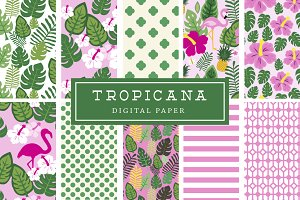 Tropical Flamingo Digital Paper