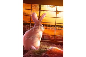 Rabbit story 24 from 25 images