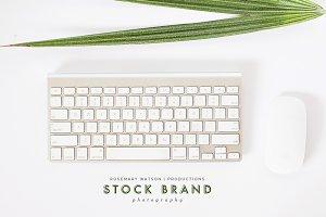 Styled Stock Photos | Tropical Desk