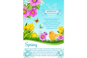 Vector spring wishes and flowers for greeting card