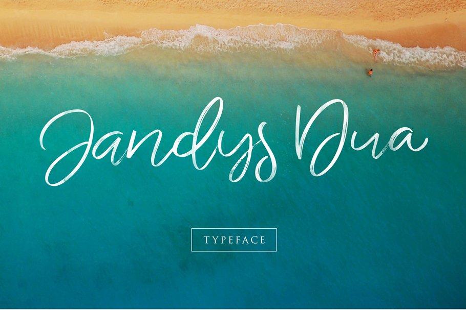 Jandys Typeface ~ Script Fonts ~ Creative Market