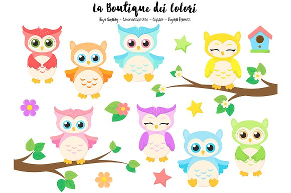 Cute Colorful Baby Owls Clipart Illustrations Creative Market