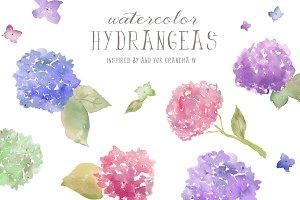Watercolor Clip Art- Hydrangeas