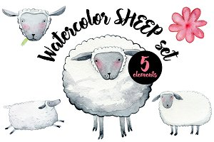 Watercolor SHEEP Set
