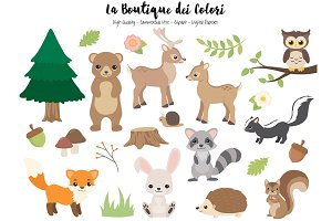 Woodland Animal Clipart
