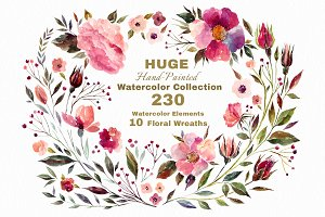230 Watercolor graphic elements