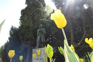 Tulips & sculpture