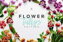Flower Tulips Edition - Custom Scene