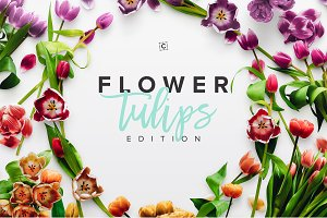 Flower Tulips Edition - Custom Scene