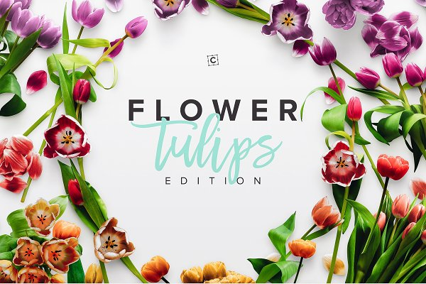 Flower Tulips Edition - Custom Scen…