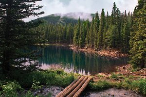 Mountain lake in an evergreen forest