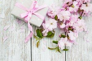 Sakura and gift box