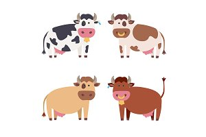 Cute Cow Set. Vector