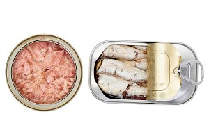 Cans of preserved fish