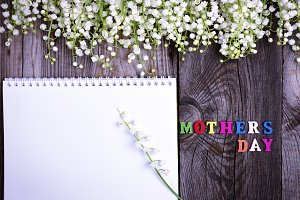 Festive inscription Mother`s Day