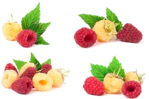 red and yellow raspberries with leaves isolated on white background. Set or collection