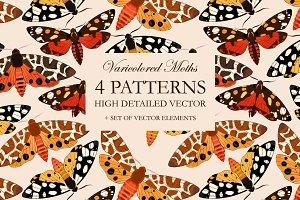 Moths Patterns