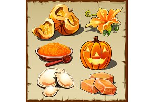 Set of pumpkin, cereals, seeds and other food