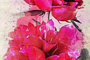 Pink peonies - floral fine art print
