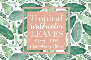Tropical Leaves & Seamless Pattern