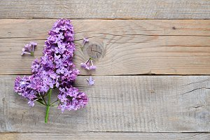Lilac flowers on old wood
