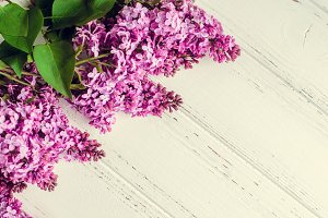 Beautiful lilac on a wooden background