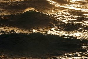 waves in  sea storm