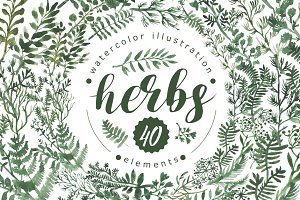 Watercolor herbs set (40+ elements)