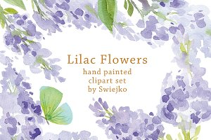 Watercolor Lilac Flowers, Butterfly