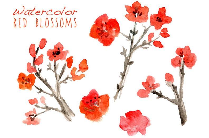 watercolor cherry blossoms illustrations creative market