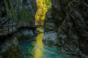 Spring in Vinter Gorge Canyon